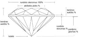 deimanto anatomija